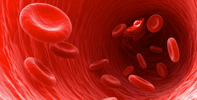 Secrets Your Blood Can Reveal